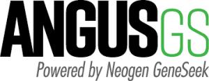 Angus GS
